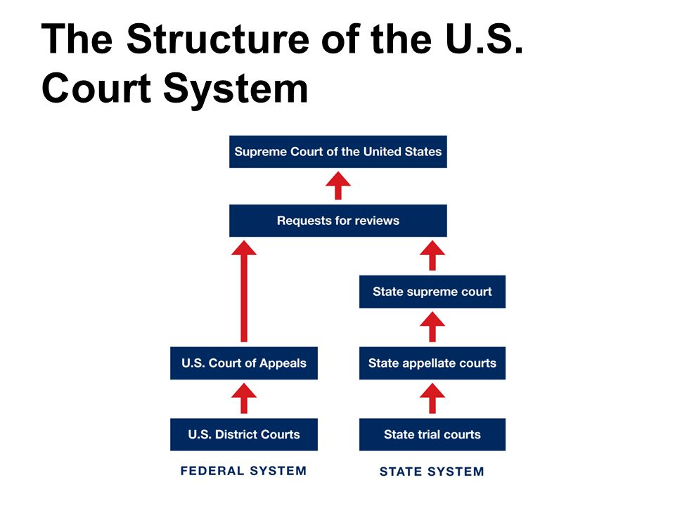 united states court systems essay 2 Criminal justice-the court system the tools you need to write a quality essay or which oversees both court systems through interpreting the united states.