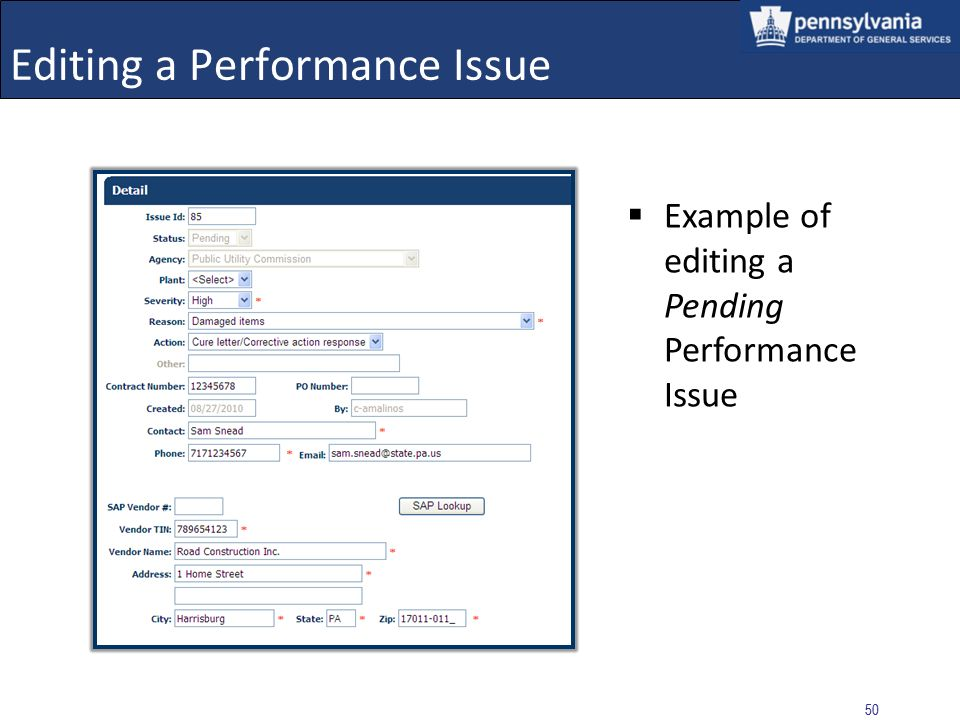Editing a Performance Issue