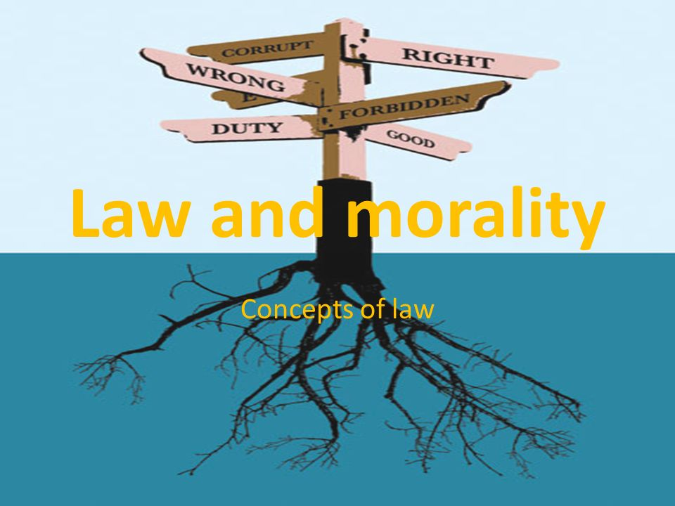 laws and morality essay This is not an example of the work written by our professional essay writers natural law theory / legal positivism  changing laws concerning morality to suit.