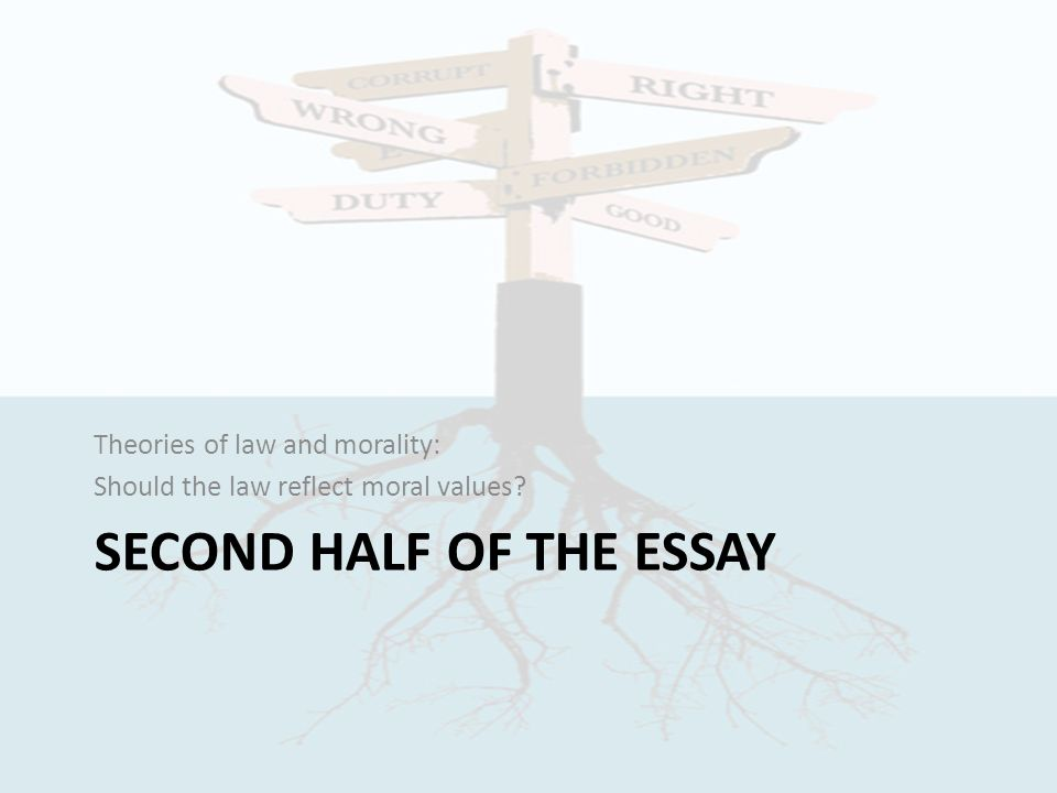 law and morality concepts of law ppt video online  second half of the essay