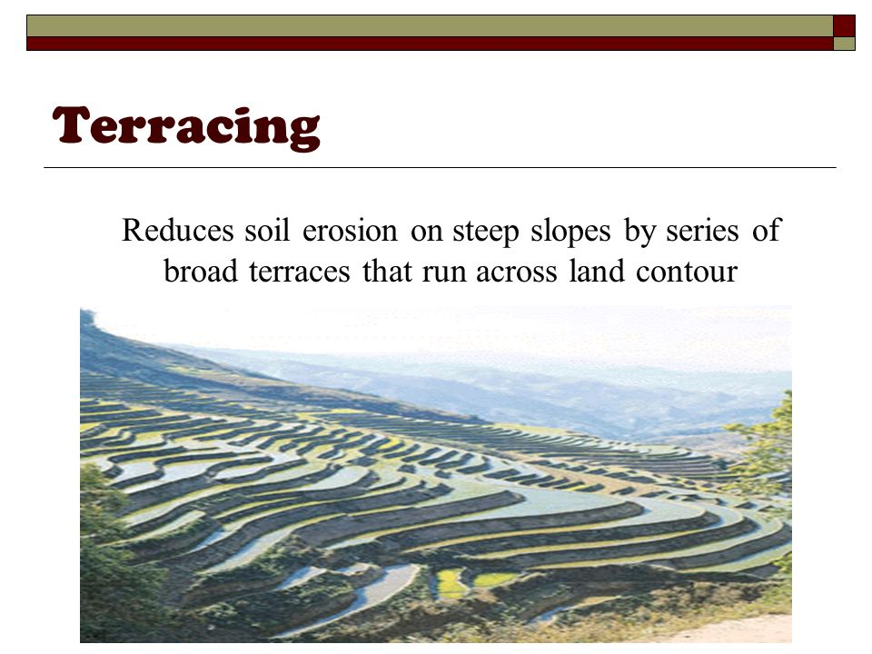Terracing Reduces soil erosion on steep slopes by series of broad terraces that run across land contour.