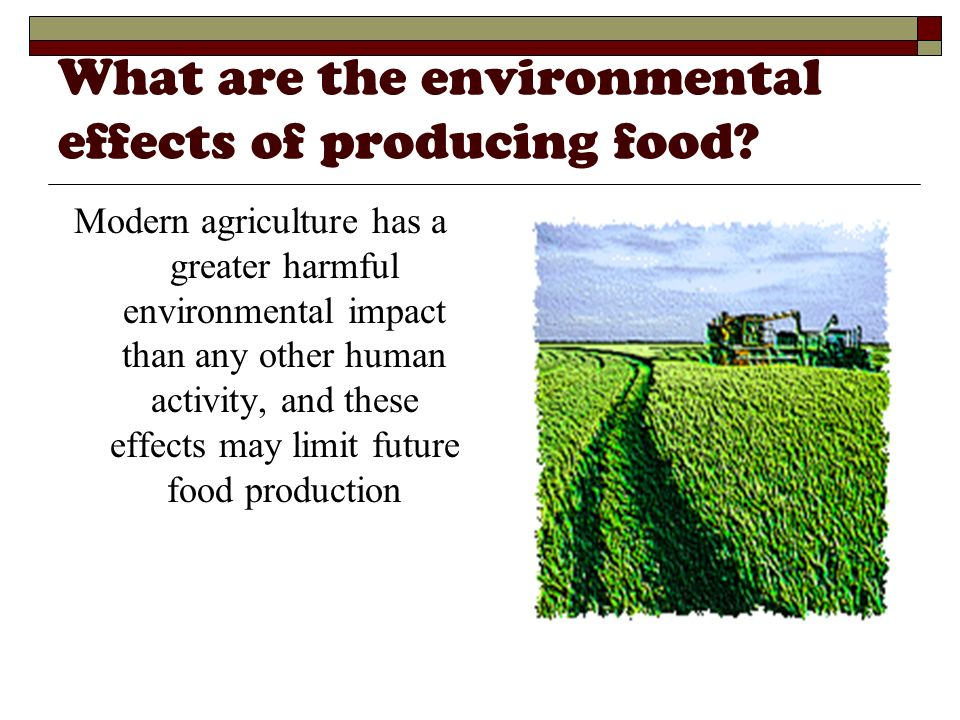 What are the environmental effects of producing food