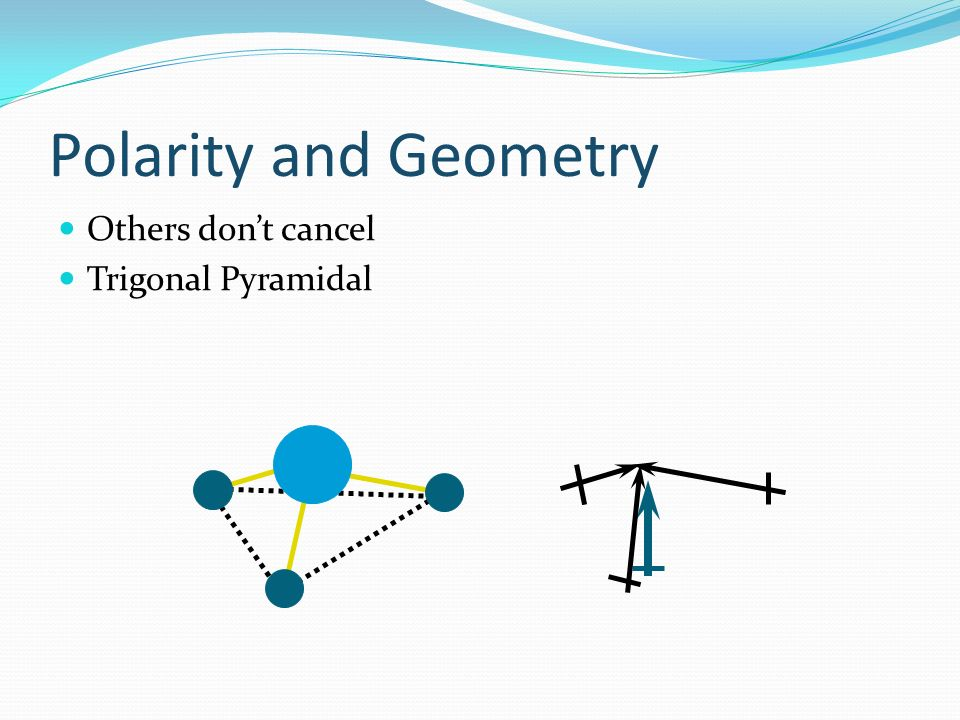 Polarity and Geometry Others don't cancel Trigonal Pyramidal