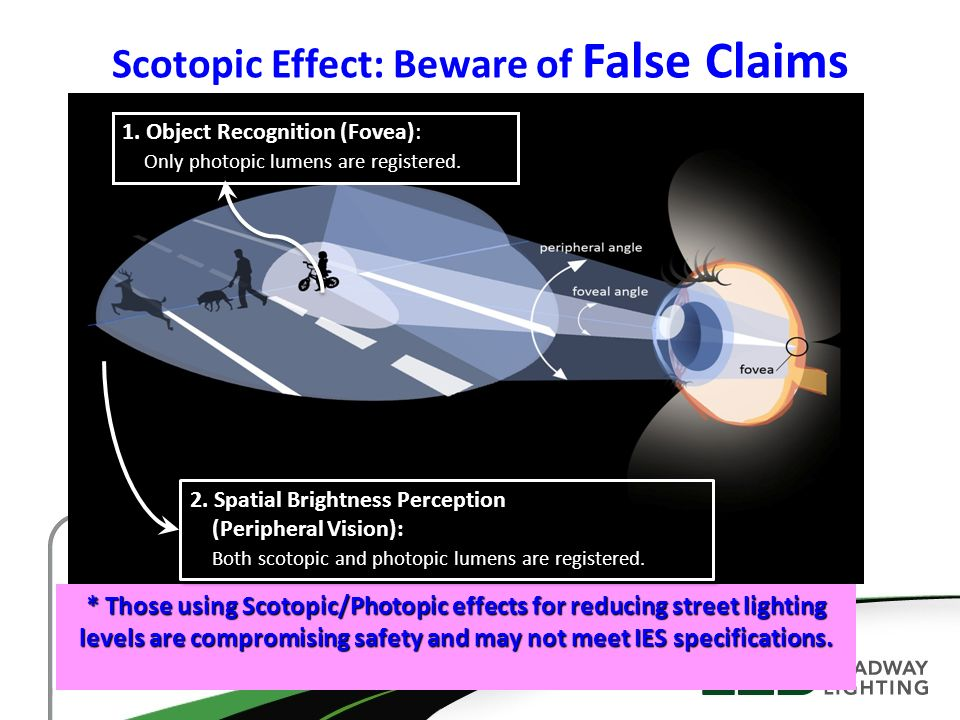 Scotopic Effect: Beware of False Claims