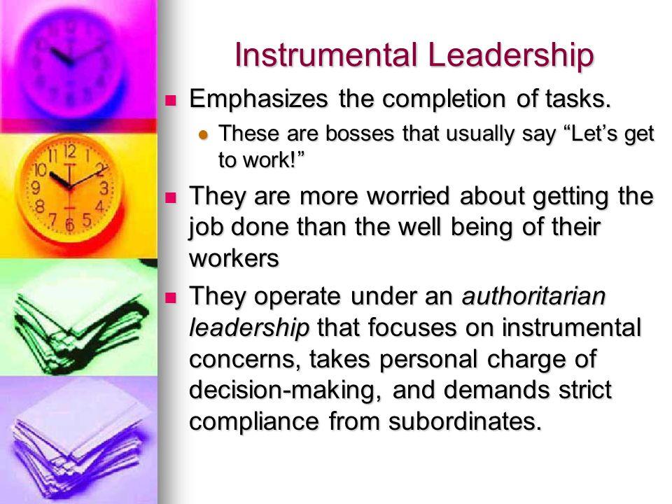 Instrumental Leadership
