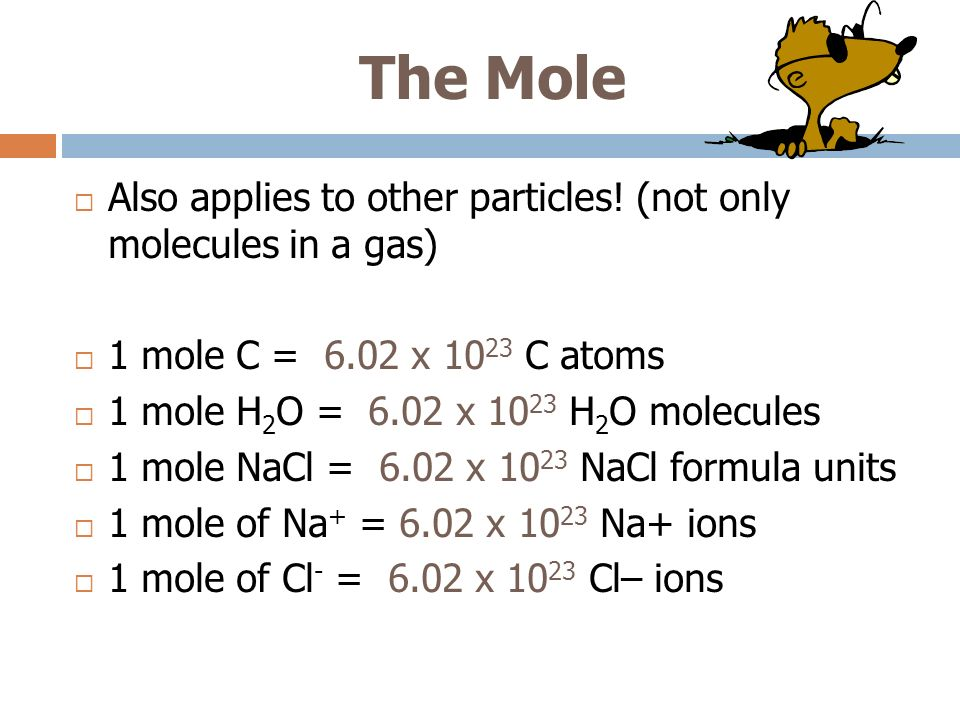 The Mole Also applies to other particles! (not only molecules in a gas) 1 mole C = 6.02 x 1023 C atoms.