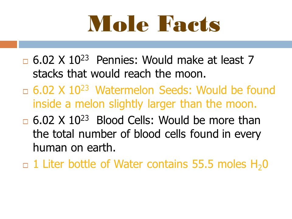 Mole Facts 6.02 X 1023 Pennies: Would make at least 7 stacks that would reach the moon.