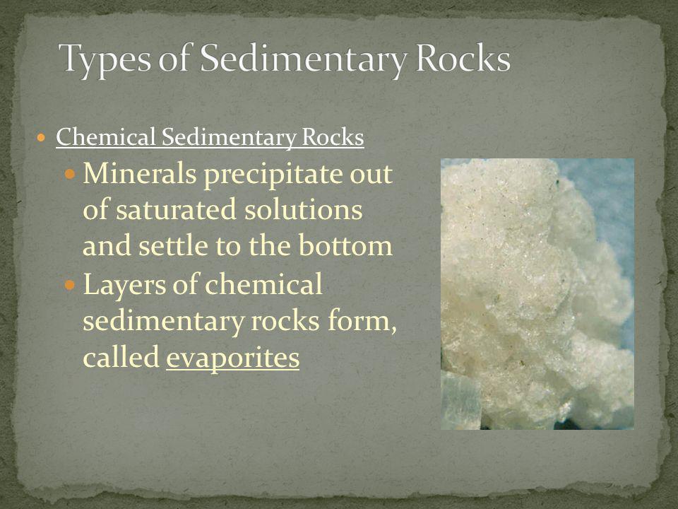 Types of Sedimentary Rocks