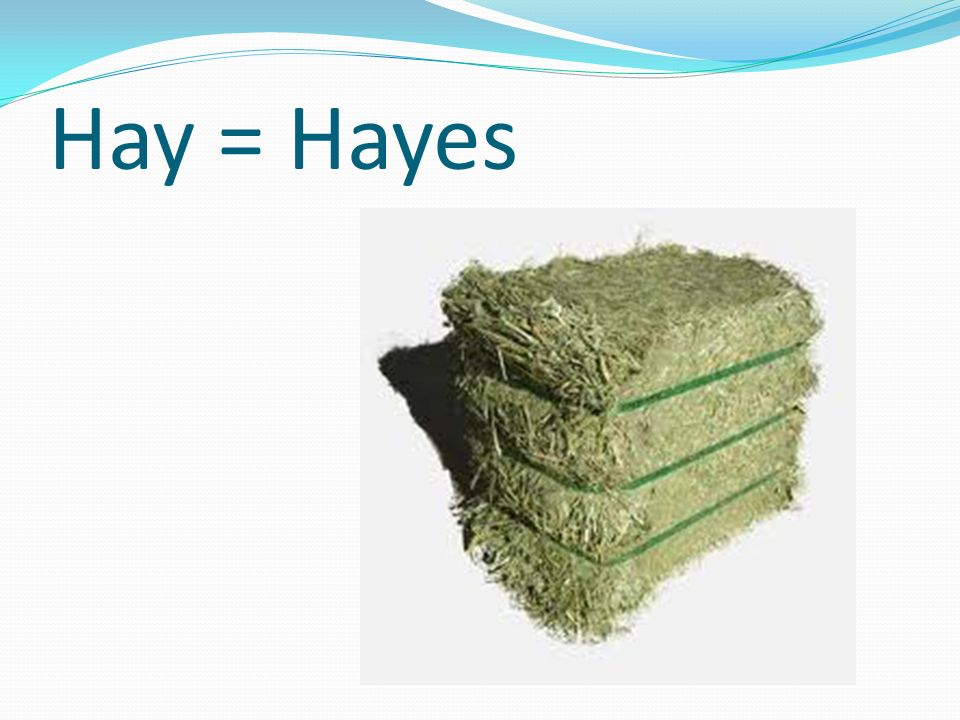 Hay = Hayes The other side of the bale has Garfield eating there.