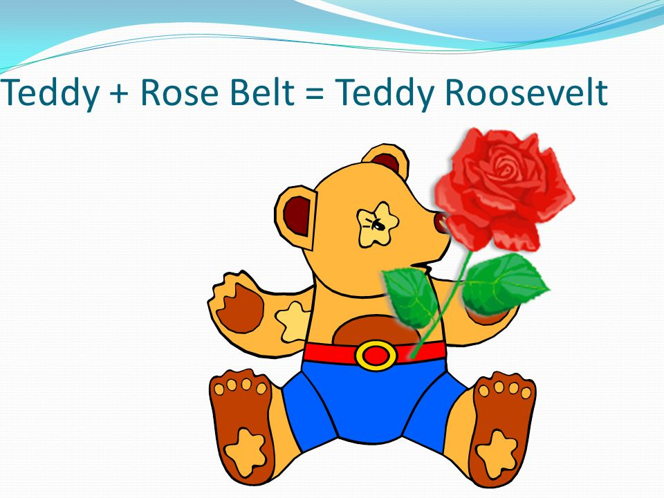 Teddy + Rose Belt = Teddy Roosevelt