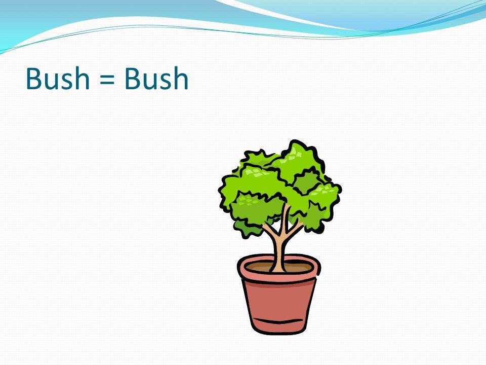 Bush = Bush …splitting it into a W . The has berries on it that look like Os .