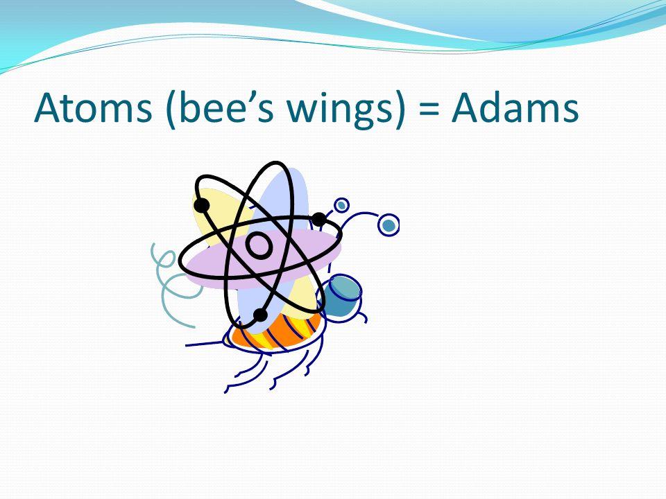 Atoms (bee's wings) = Adams
