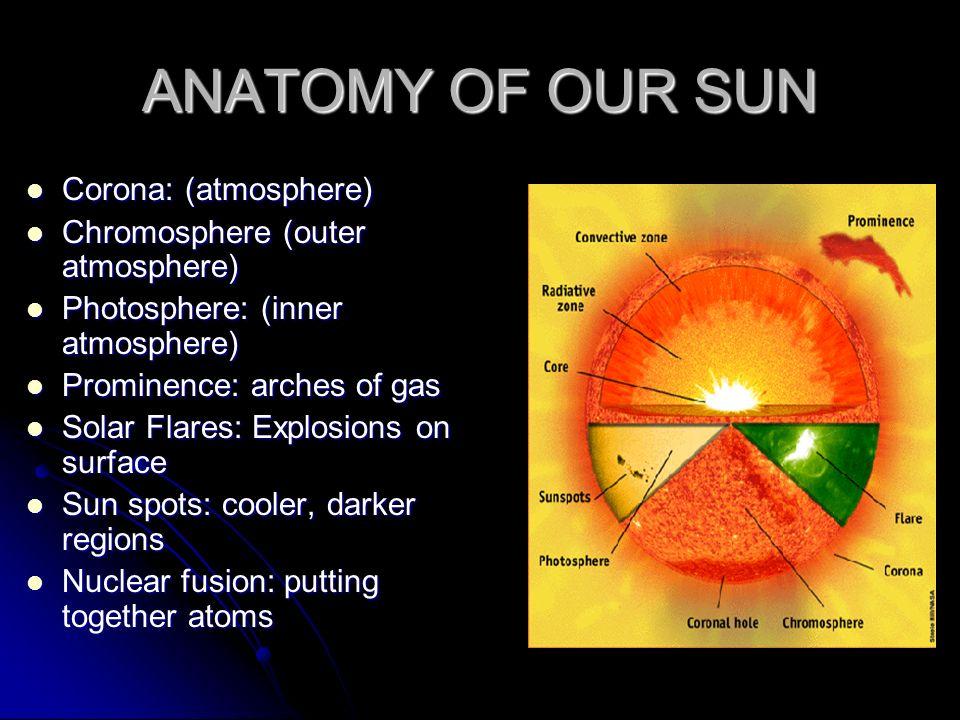 ANATOMY OF OUR SUN Corona: (atmosphere)