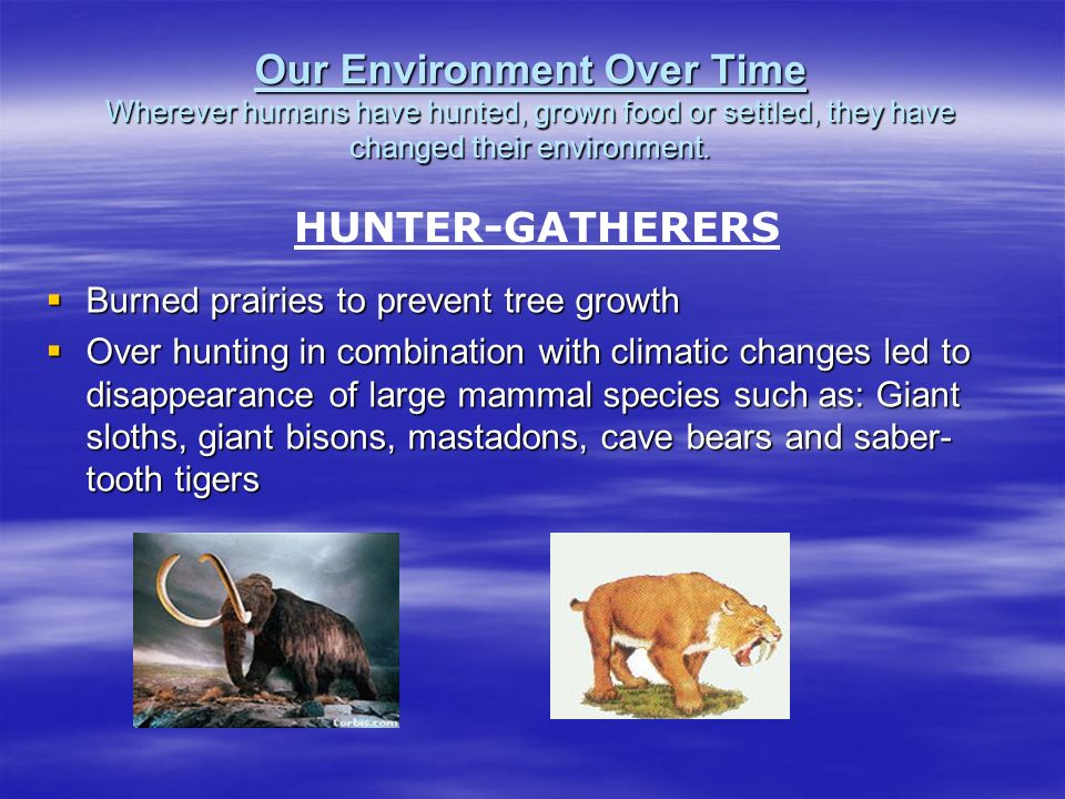 Our Environment Over Time Wherever humans have hunted, grown food or settled, they have changed their environment.