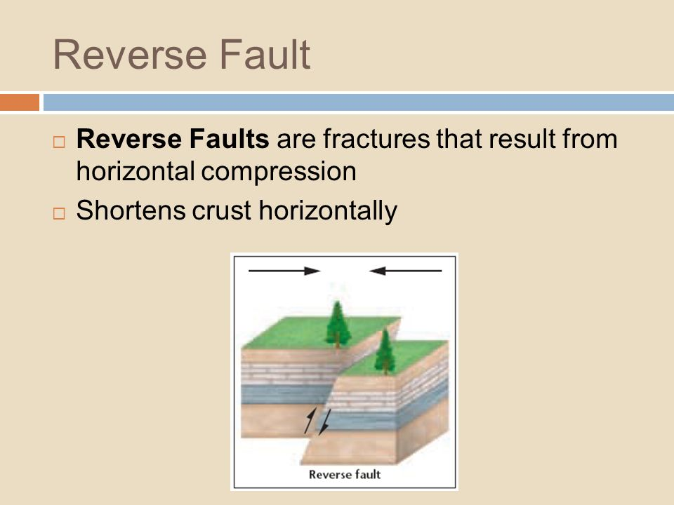 Reverse Fault Reverse Faults are fractures that result from horizontal compression.