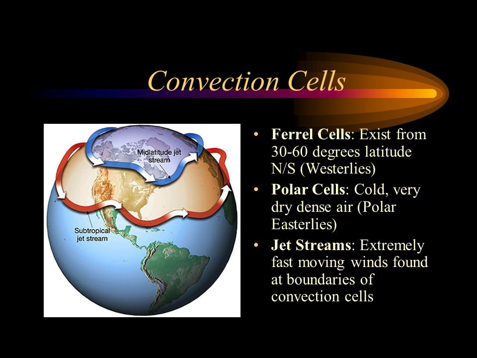 Convection Cells Ferrel Cells: Exist from 30-60 degrees latitude N/S (Westerlies) Polar Cells: Cold, very dry dense air (Polar Easterlies)