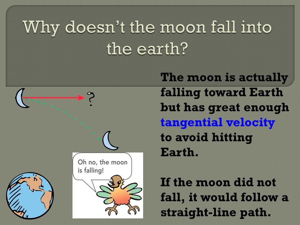 Why doesn't the moon fall into the earth