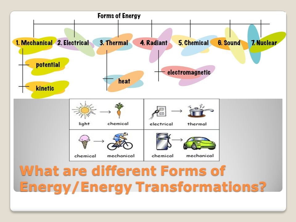 What are different Forms of Energy/Energy Transformations