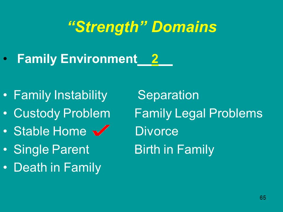 Strength Domains Family Environment__2__