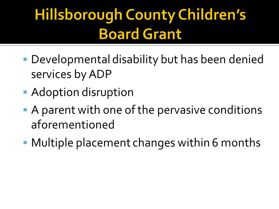 Hillsborough County Children's Board Grant
