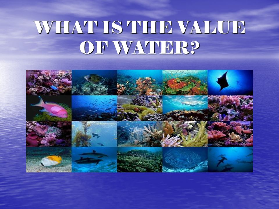 WHAT IS THE VALUE OF WATER
