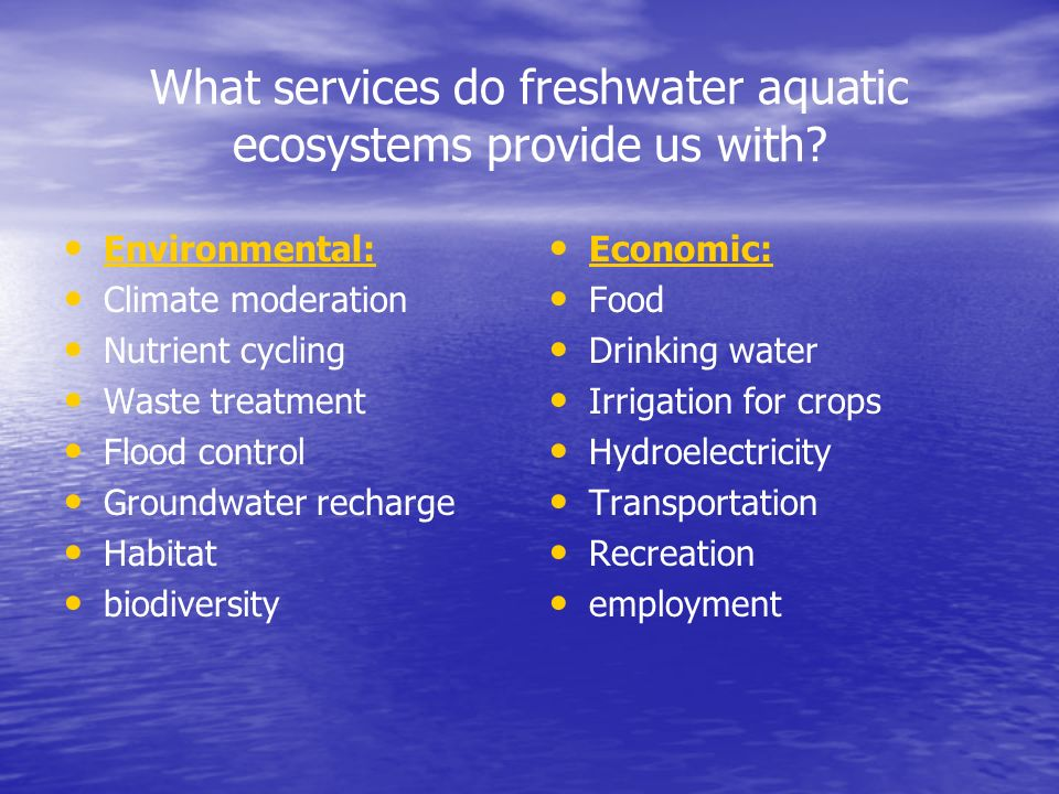 What services do freshwater aquatic ecosystems provide us with