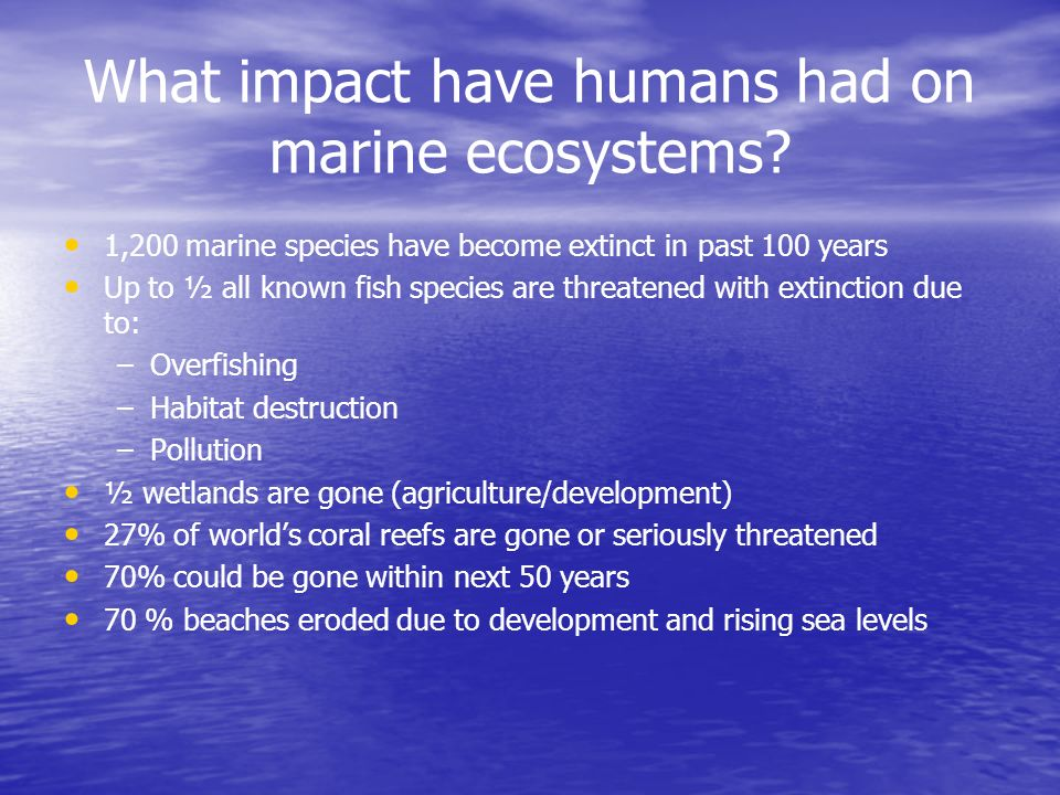 What impact have humans had on marine ecosystems
