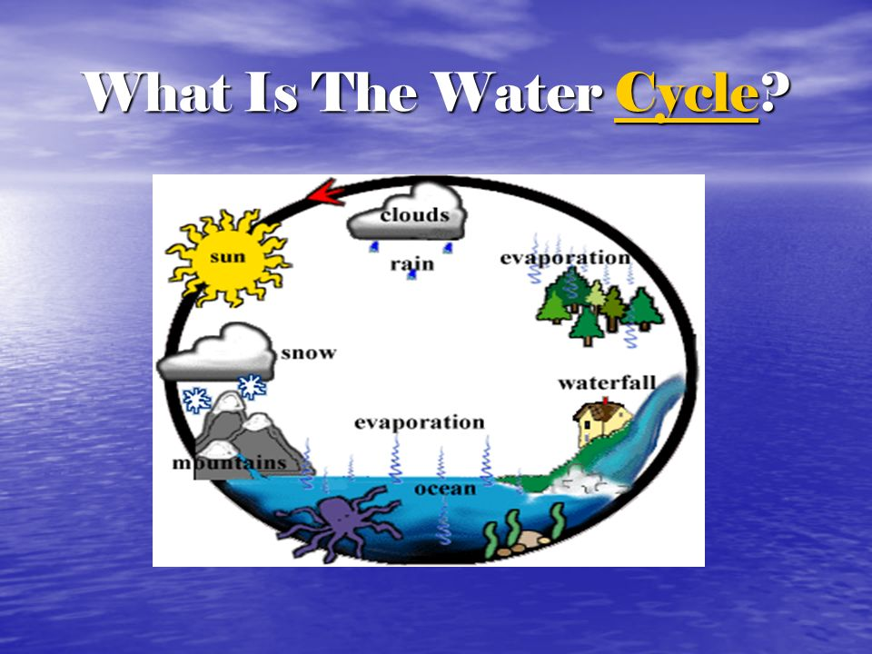 What Is The Water Cycle
