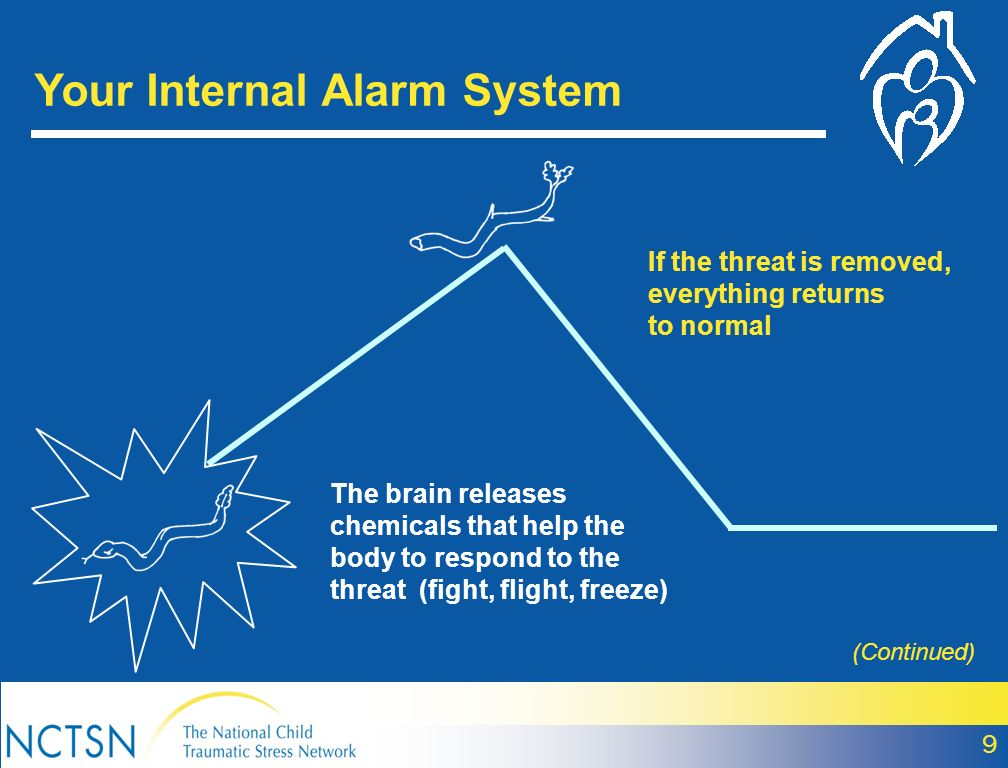 Your Internal Alarm System