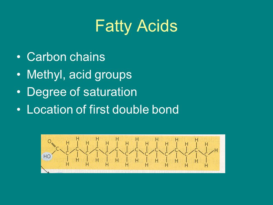 Fatty Acids Carbon chains Methyl, acid groups Degree of saturation