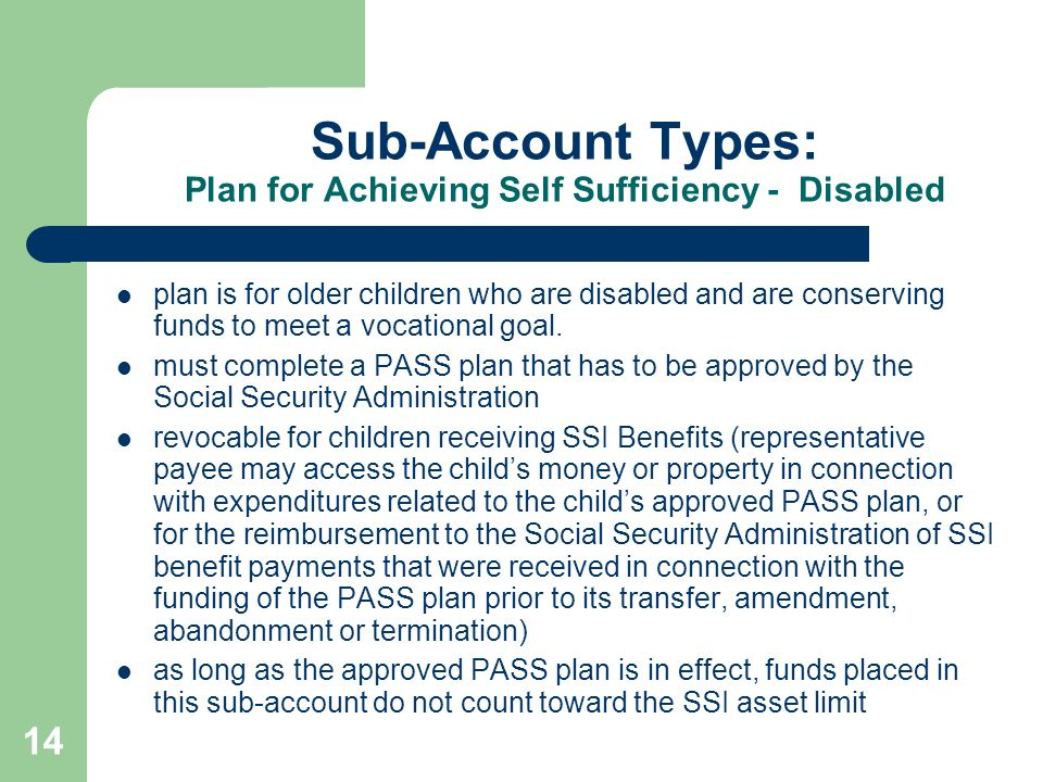 Sub-Account Types: Plan for Achieving Self Sufficiency - Disabled