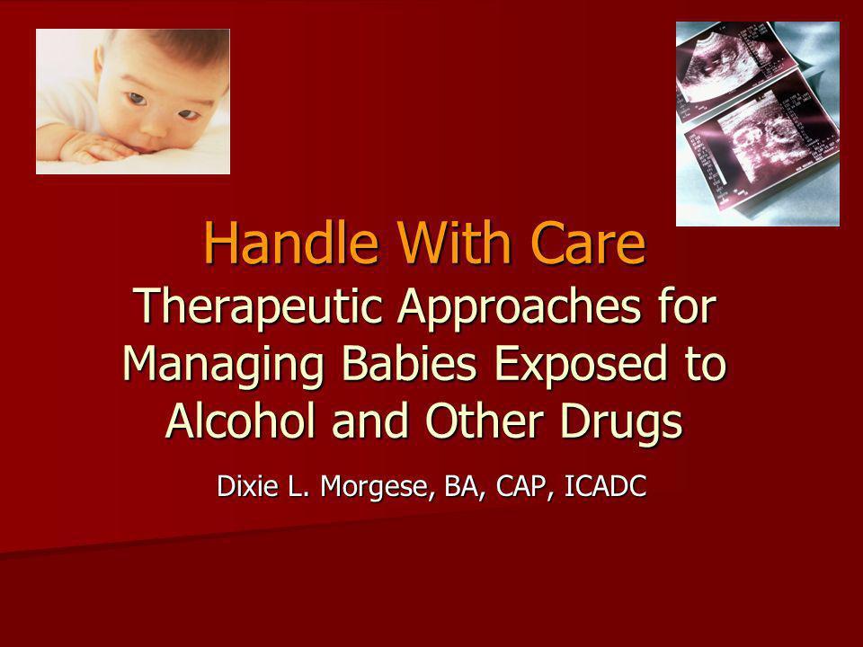 Dixie L. Morgese, BA, CAP, ICADC