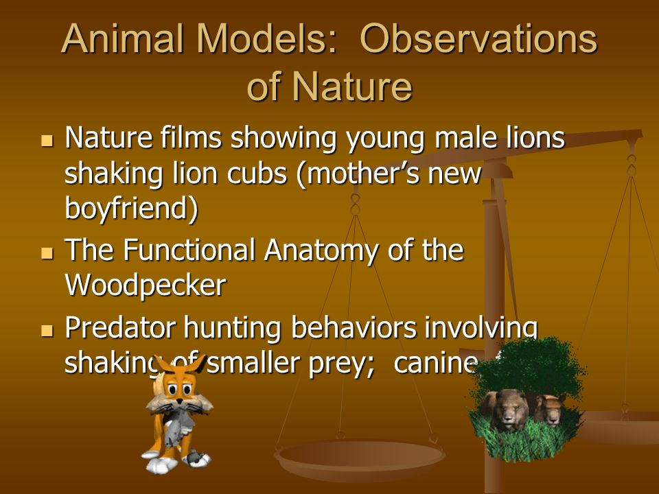 Animal Models: Observations of Nature