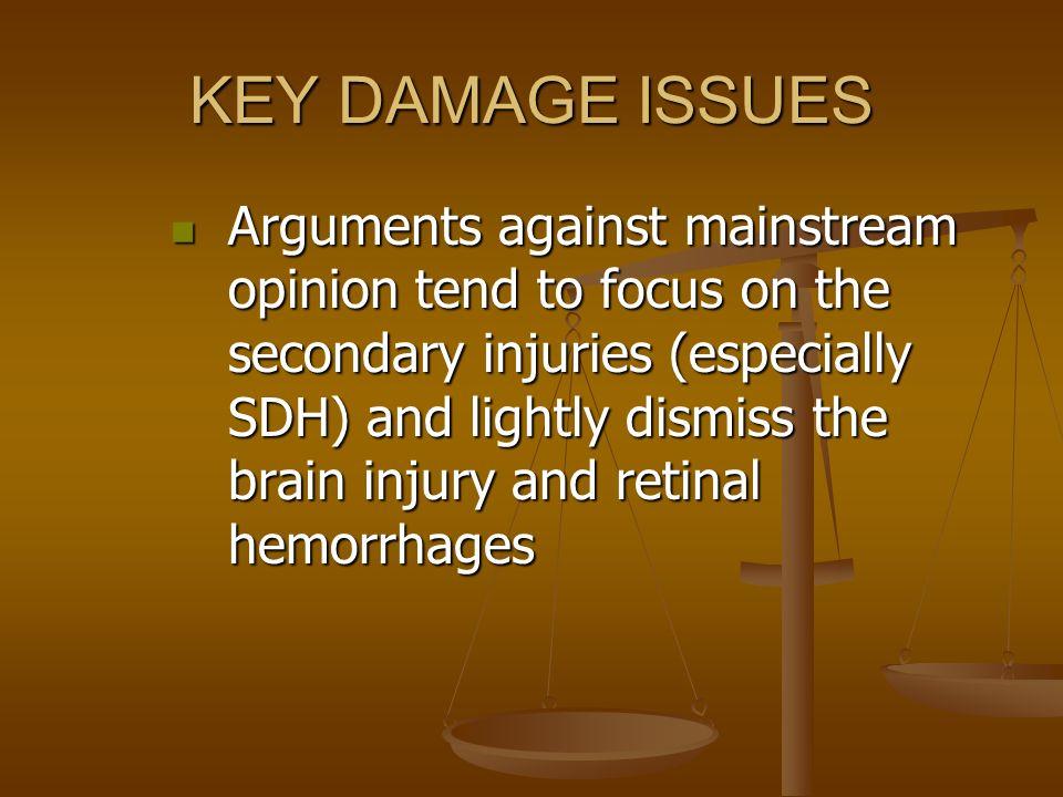 KEY DAMAGE ISSUES