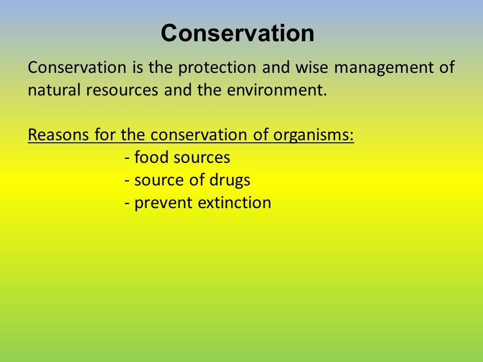 guidelines and arguments for conserving natural resources Conserving natural resources is an important landmark to achieve for the world   the main reasons for this depletion is the improper and excessive use and the   resource, which should be conserved by adopting strict rules and measures.