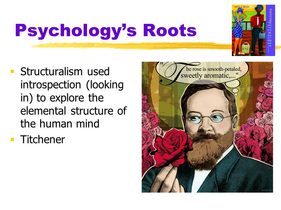 Psychology's Roots Structuralism used introspection (looking in) to explore the elemental structure of the human mind.