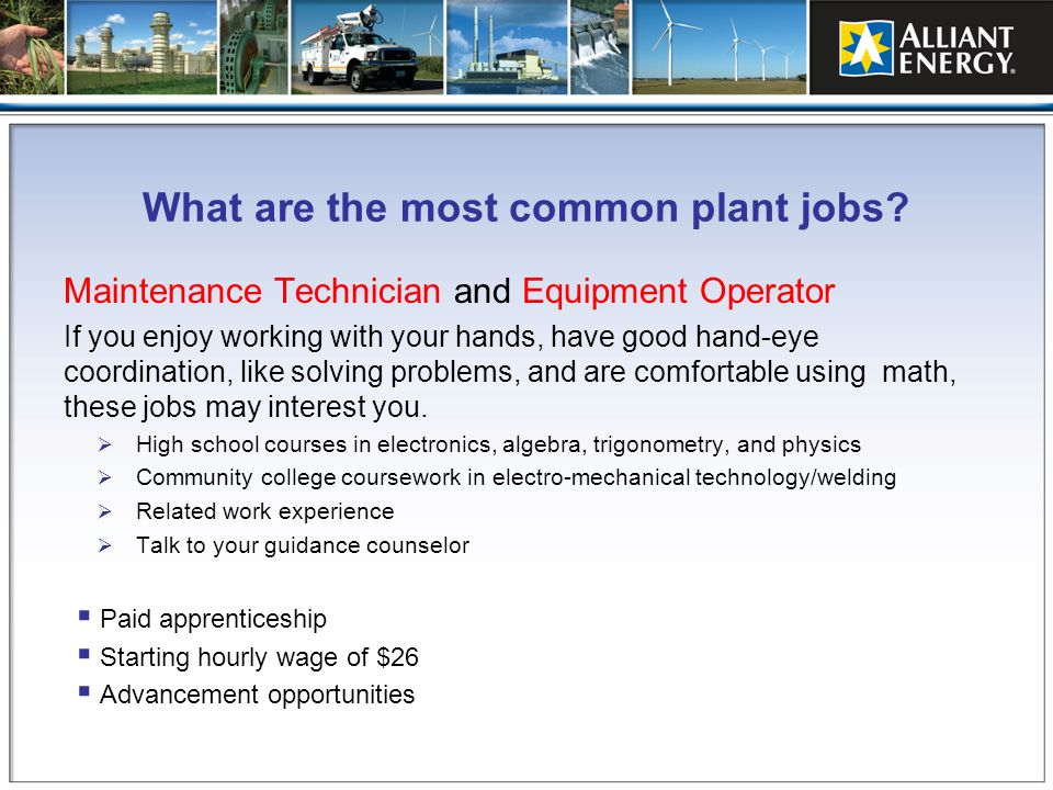 What are the most common plant jobs