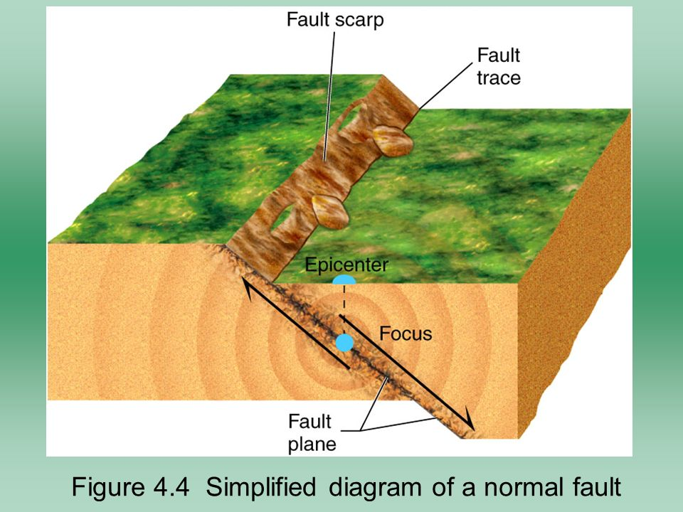 focus earthquake diagram   24 wiring diagram images