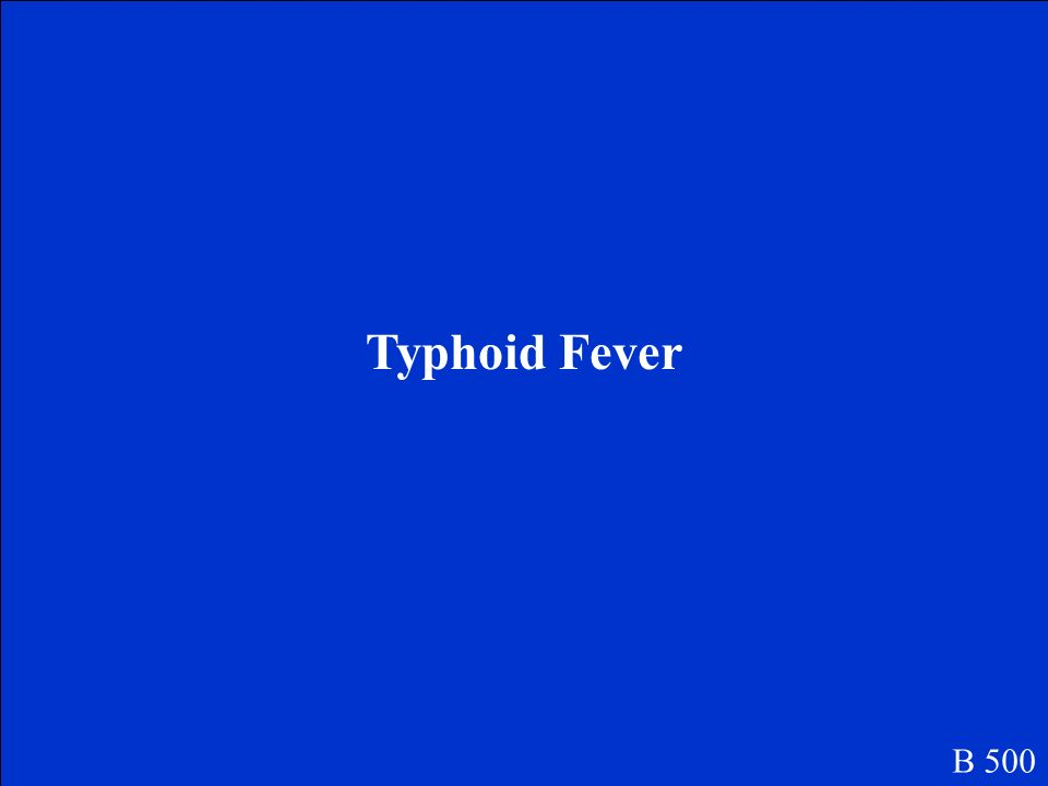 Typhoid Fever B 500