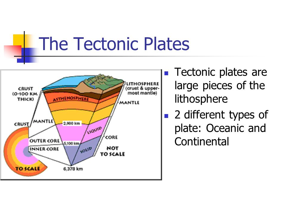 The Tectonic Plates Tectonic plates are large pieces of the lithosphere.