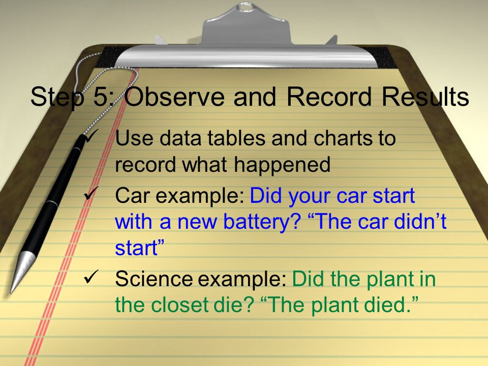 Step 5: Observe and Record Results