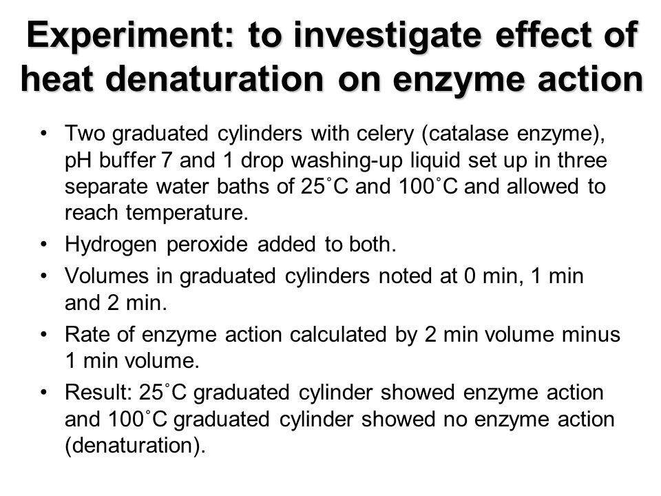 experiment of enzyme activity in washing The use of enzymes in detergents enzyme technology the use of enzymes in detergents which later disperse in the wash.