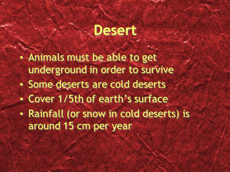 Desert Animals must be able to get underground in order to survive
