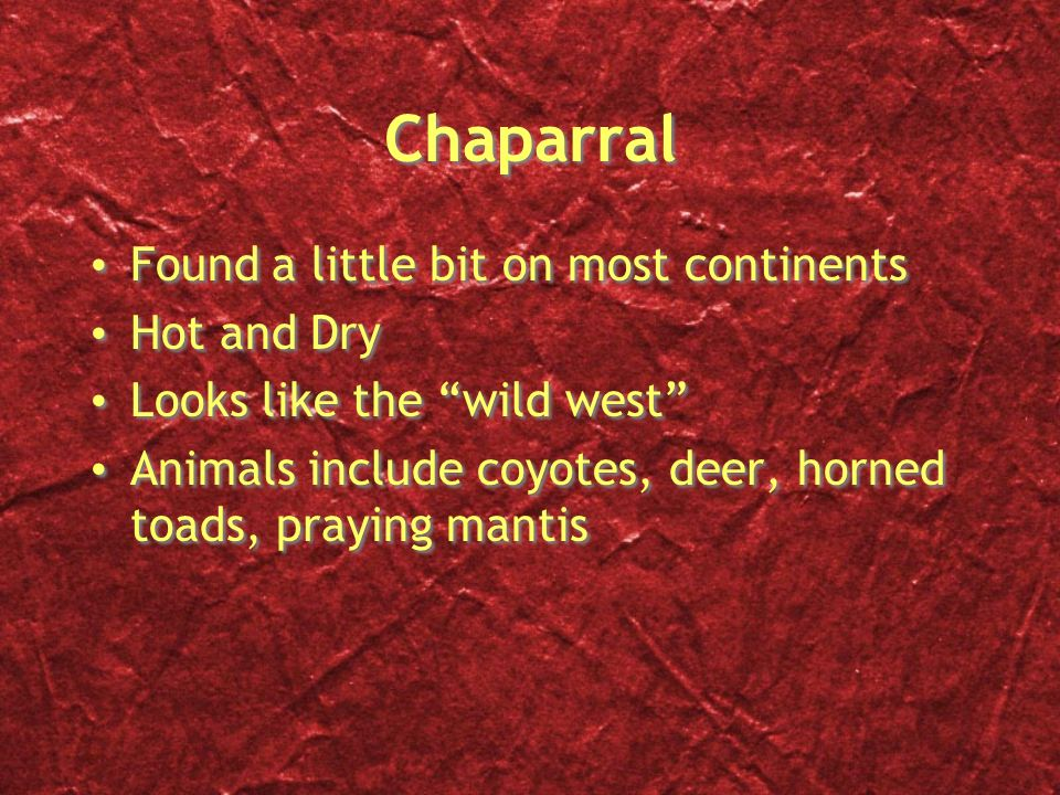 Chaparral Found a little bit on most continents Hot and Dry