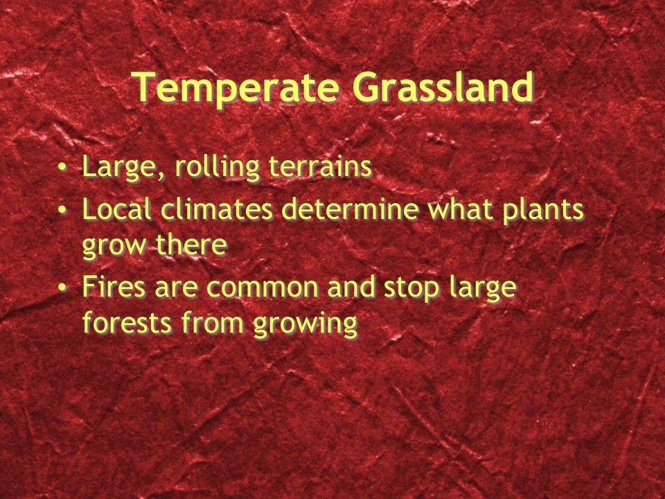 Temperate Grassland Large, rolling terrains
