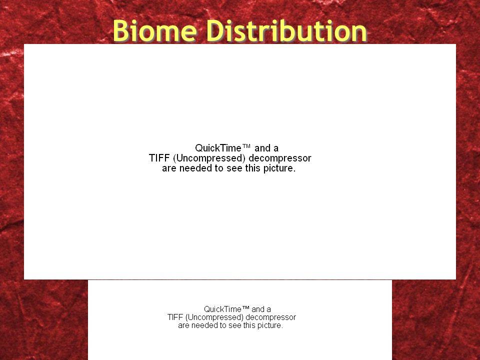 Biome Distribution