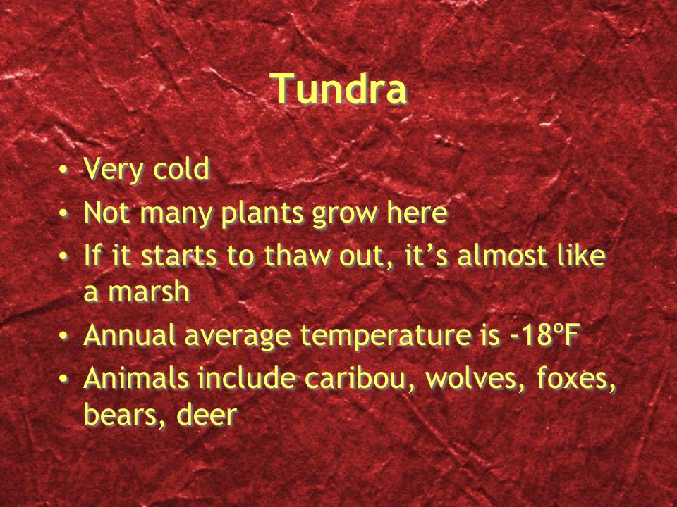Tundra Very cold Not many plants grow here