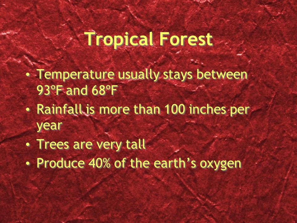 Tropical Forest Temperature usually stays between 93ºF and 68ºF