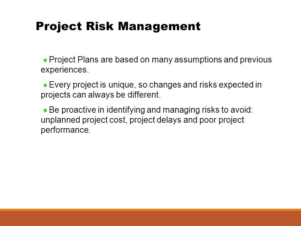 Risikomanagement projektmanagement pdf