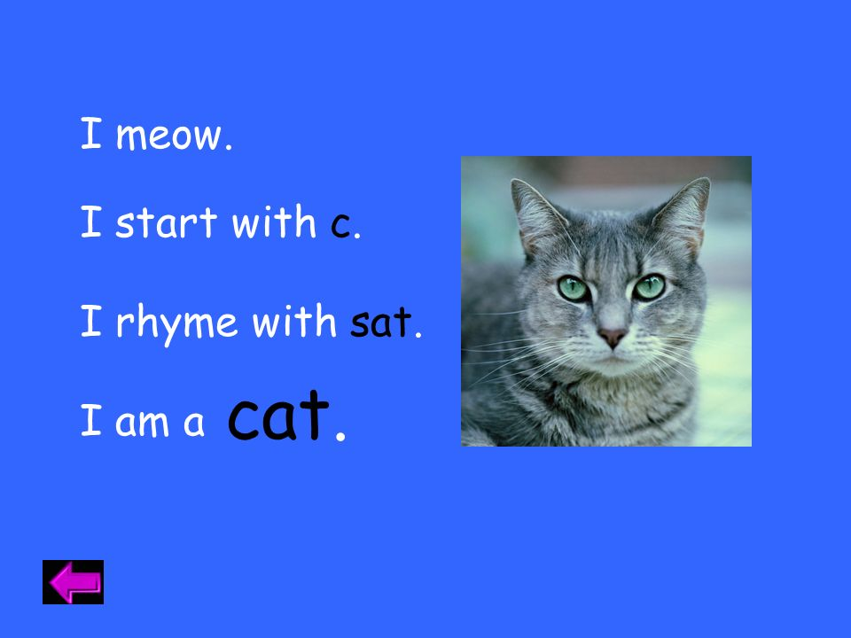 I meow. I start with c. I rhyme with sat. cat. I am a Category 1 - 10
